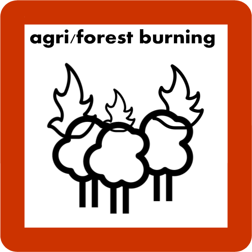 Biomass Burning